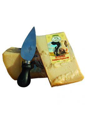 Parmigiano Reggiano 24 months - 0,600 Kg
