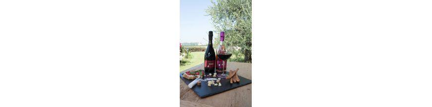 Le nostre selezioni: i vini dell'Emilia Romagna